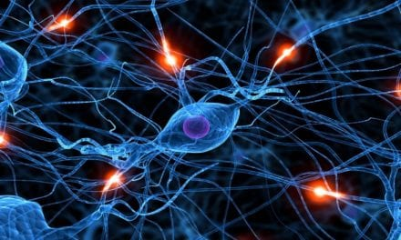 20 Things You Probably Didn't Know About The Human Brain