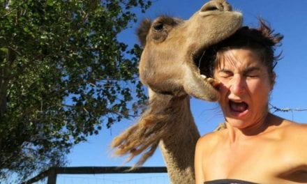19 Selfie Fails That You Won't Believe