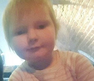 This 2-Year-Old Freakishly Resembles Ed Sheeran And The Internet Is Losing It
