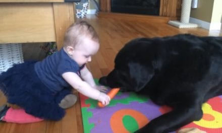 This Baby Fighting With Her Dog Over A Carrot Is The Cutest Thing You'll See Today