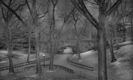 Insomniac Photographer Captures Hauntingly Beautiful After-Hours Photos Of Central Park