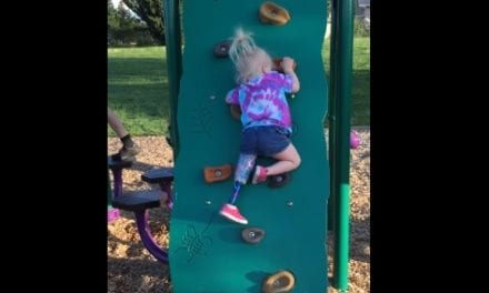 Brave Little Warrior With One Leg Climbs Up A Rock Wall