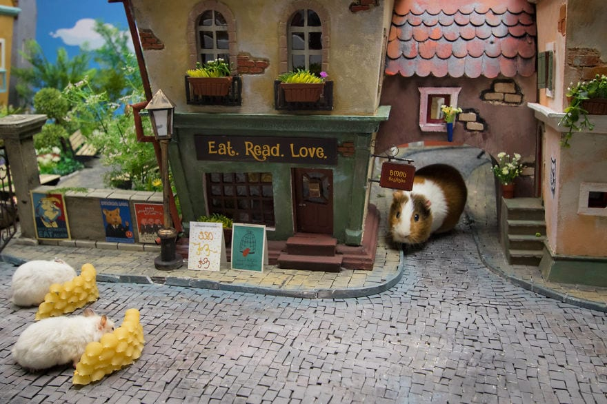 They Created A Miniature Town With Everything Tiny For Hamsters