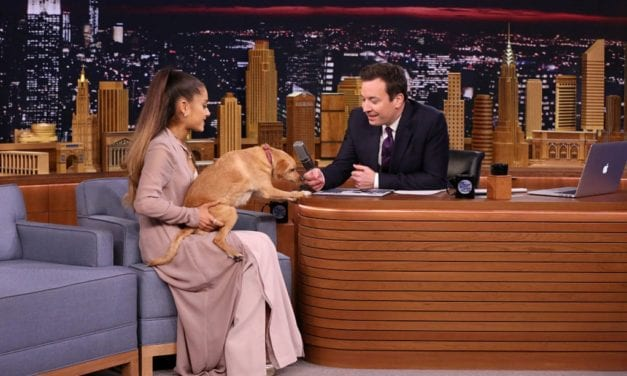 Ariana Grande Has Almost one Dozen Pets; Here Are Their particular Names and Types