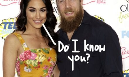 Briekäse Bella Says She and Hubby Daniel Bryan Are usually 'Growing Apart' — OH YEA NO!