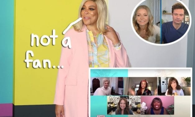 Wendy Williams Calls Out TELEVISION Hosts For 'Looking Disgusting' While Filming At Home