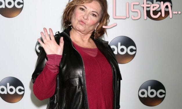 HUH?! Roseanne Barr Is Back Along with CRAZY Donald Trump Concept