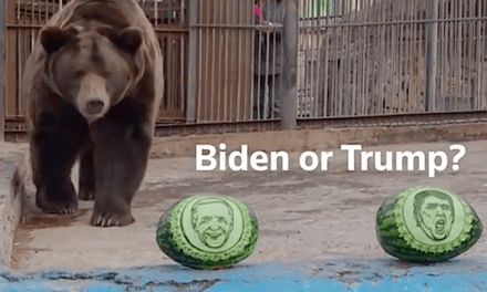 Selection Day Open Post: Managed By Animals Predicting The following POTUS