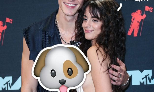 Shawn Mendes & Camila Cabello Are Officially DOG Mom and dad — Meet Their Sweet New Pup Tarzan!