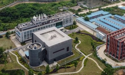 WHOM Report Blames Creatures Instead of Wuhan Laboratory Leak for CCP Virus Outbreak, Queries Unanswered