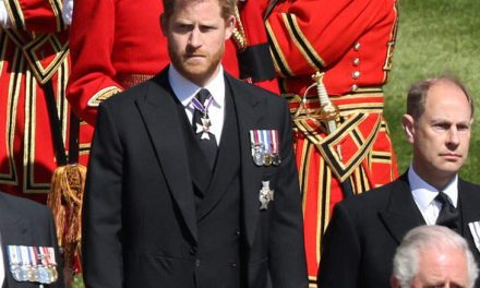 """The particular Re-Issue Of """"Finding Freedom"""" Claims That will Prince Harry As well as the Queen Had A Particular Reunion After Knight in shining armor Philip's Funeral"""